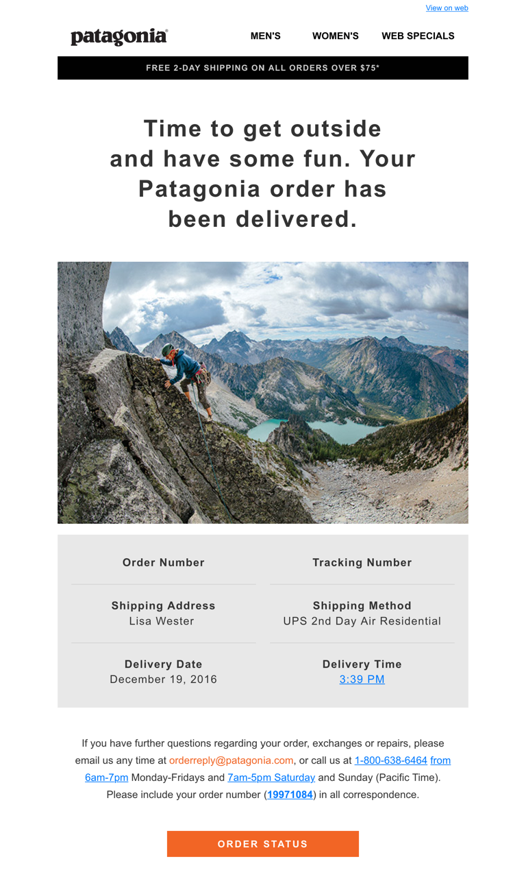 Patagonia Delivered Campaign