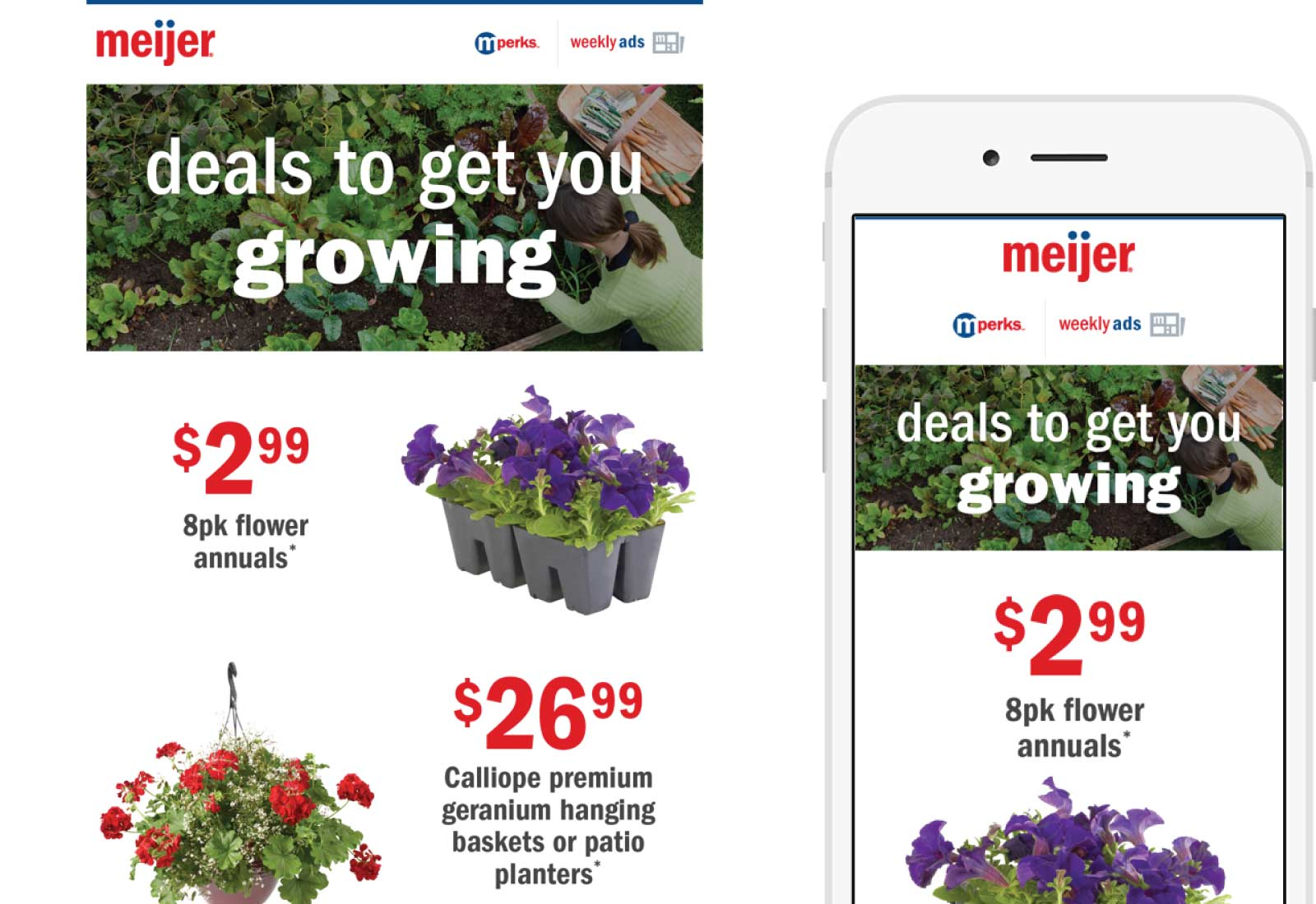 Meijer Email